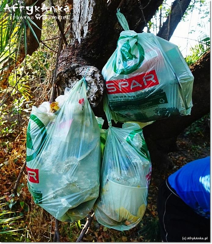 Śmieci trzeba powiesić na drzewie by nie dobrały się do nich zwierzęta.