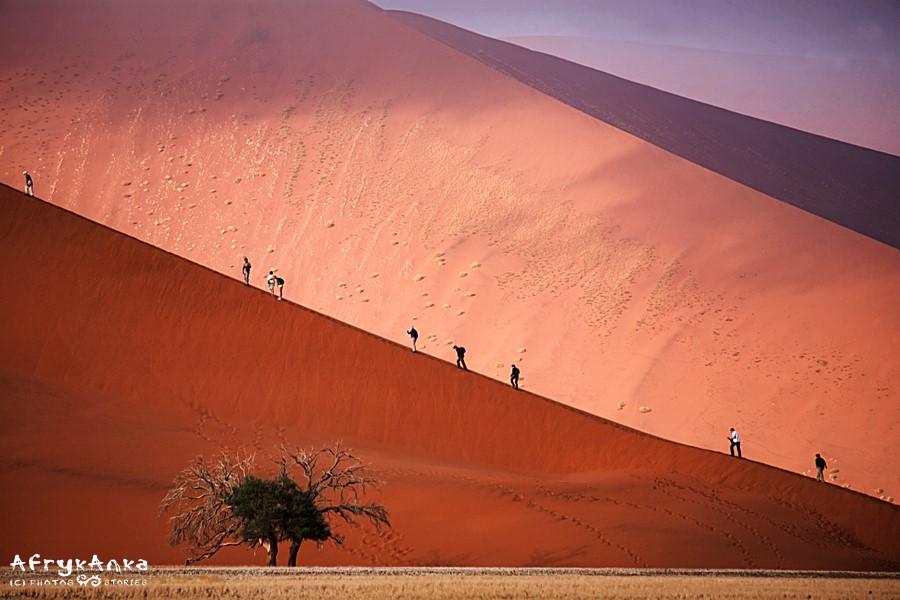 Pustynia Namib - wędrówka na Dune 45