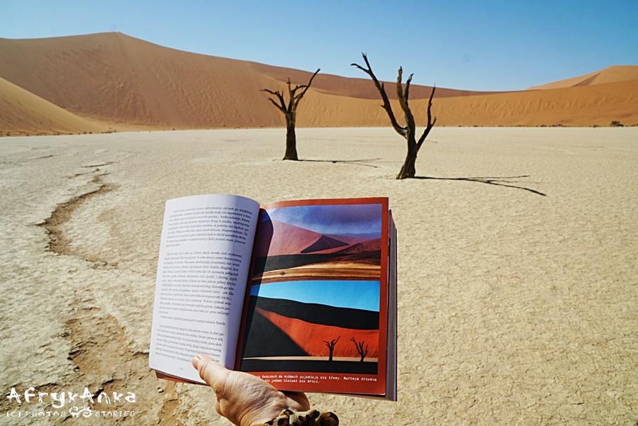 Te same drzewa co na dolnym zdjęciu, ale inna pora dnia i po magicznym świetle wschodu nie ma śladu...