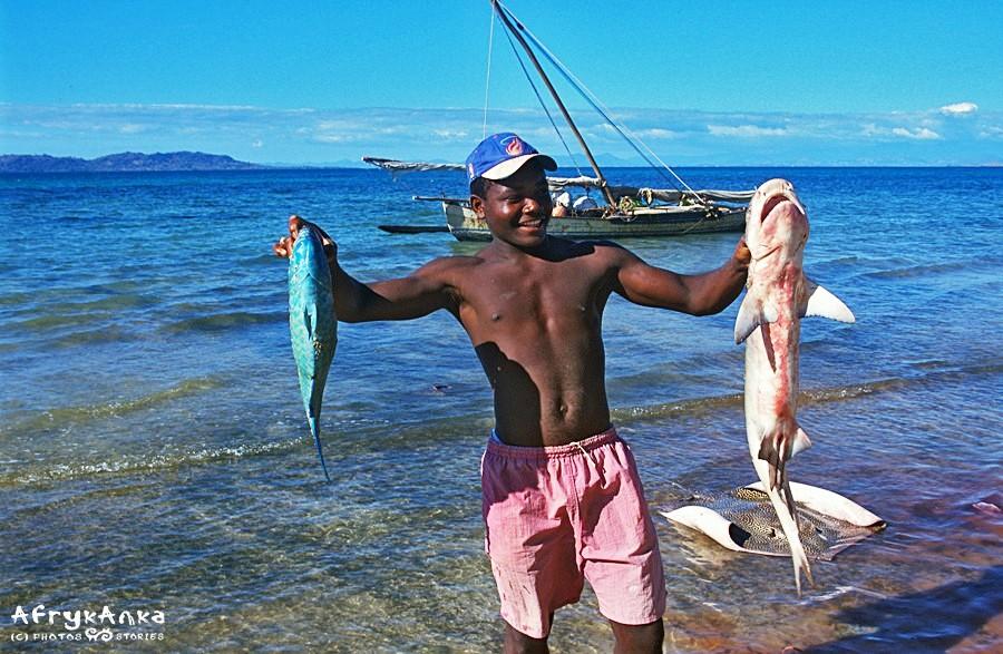 Udany połów: ryba papuzia, rekin i płaszczka.