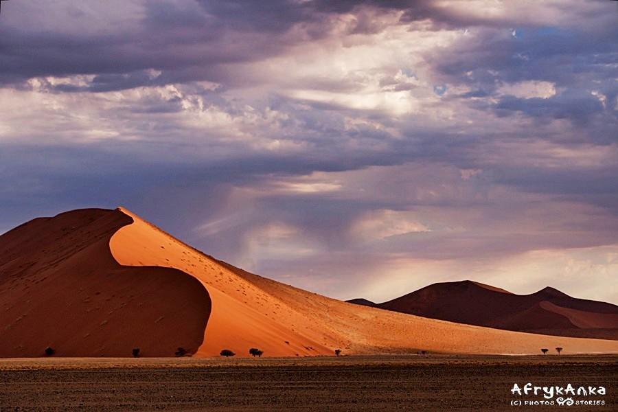 Oczywiście opowiadałam też o pustyni Namib!