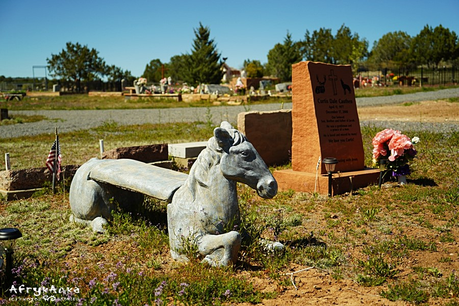 Ash Fork - widok ogólny cmentarza.