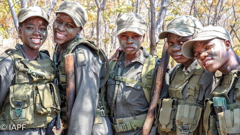 Kobiety z Zimbabawe chroniące przyrodę.