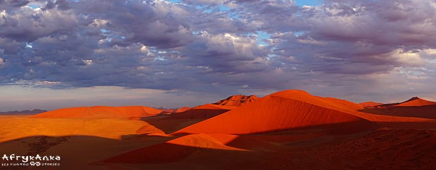 Dlaczego Namibia urzeka? Choćby spektakularnie piękną pustynią!
