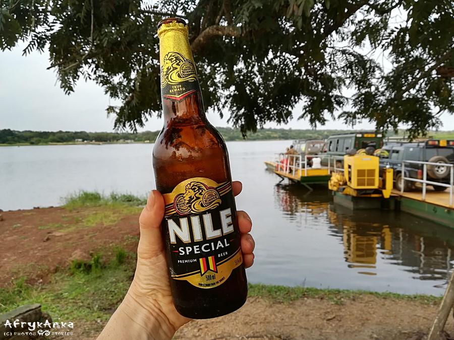 Piwo Nil - nad Nilem!
