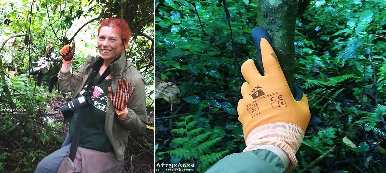 W lesie: modnie i praktycznie!