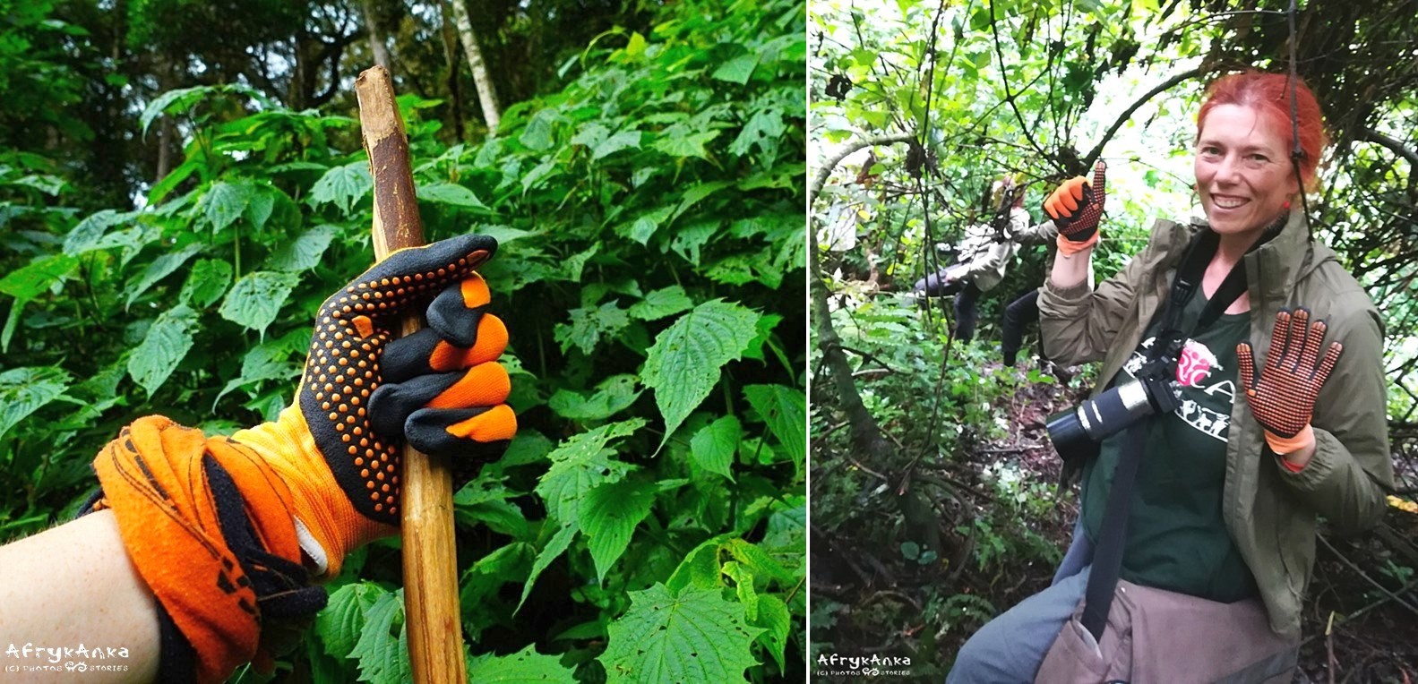 Zestaw na wędrówki po lesie. Rękawiczki, bandanka, kijek!