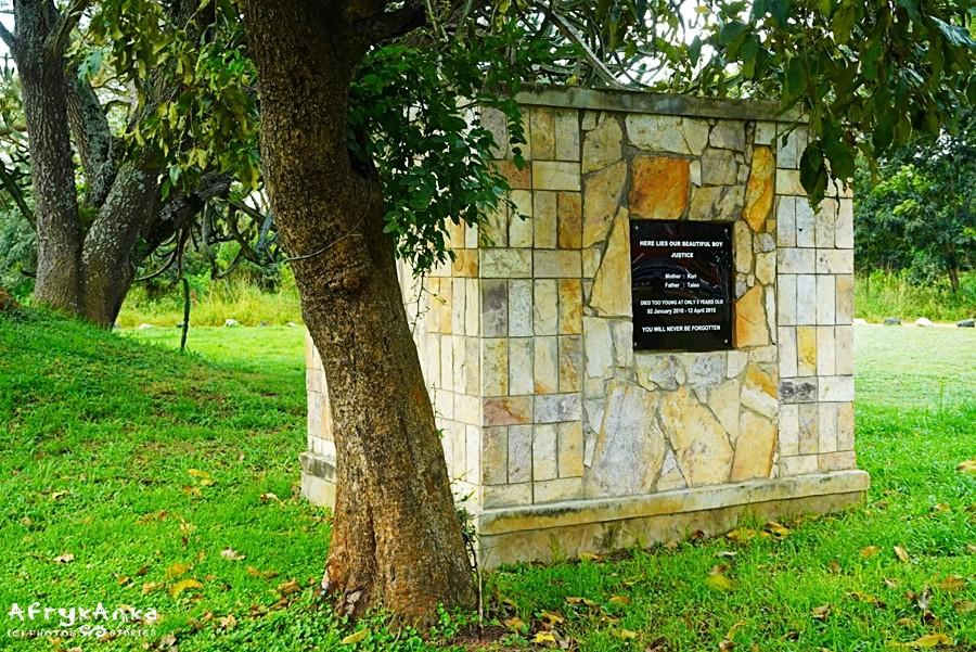 Grobowiec jednego z padłych młodych nosorożców.