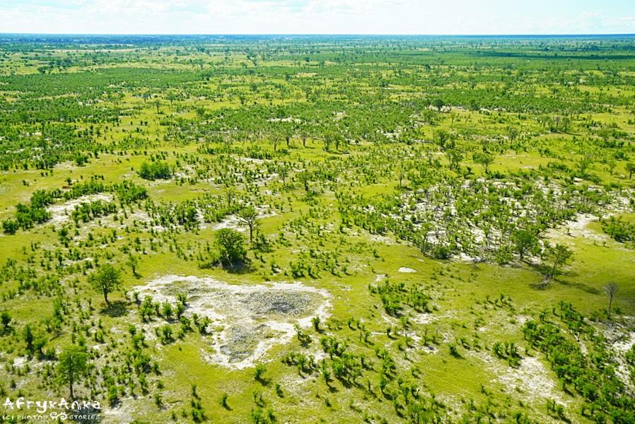 Lot nad Okavango to zupełnie inne spojrzenie na deltę.
