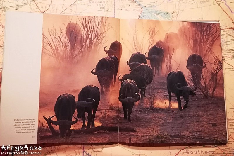 """""""Dzienniki afrykańskie"""" pełne są pięknych zdjęć."""