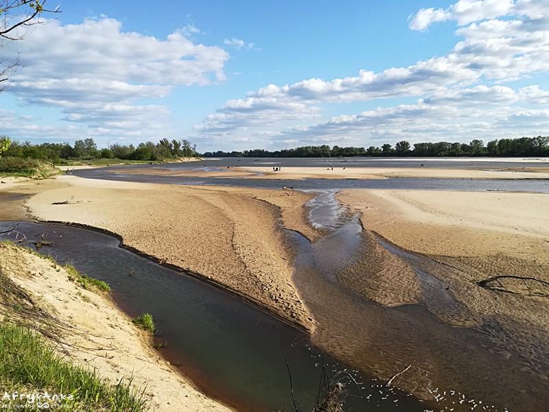 I widać piękne łachy piasku.