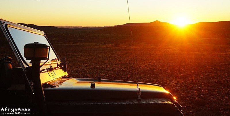 Safari o zachodzie słońca.