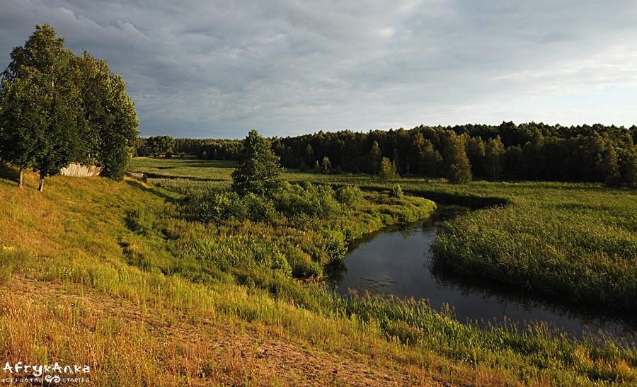 Panorama rzeki ze skarpy przed Dworczyskiem.