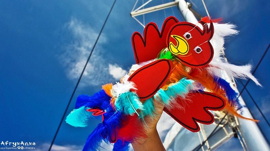 Papuga - przyjaciel pirata!