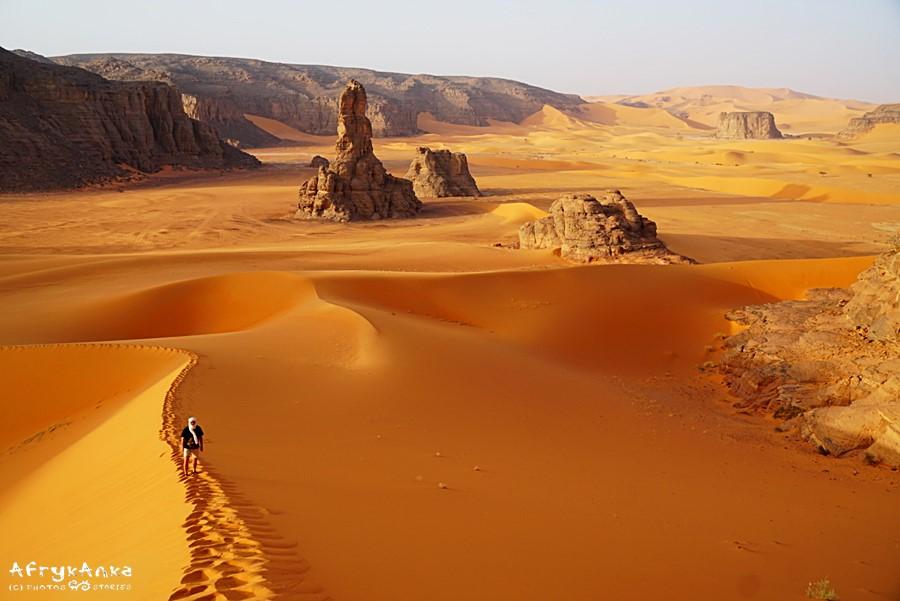 Sahara - zdobywanie wydm wymaga wysiłku (i butów z mocną podeszwą).