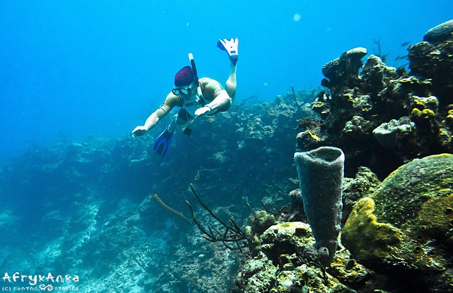 Freediver na Kubie - spotkaliśmy go na 14 metrach głębokości.