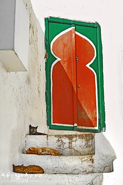 Drzwi do grobowca świętego strzegą koty.