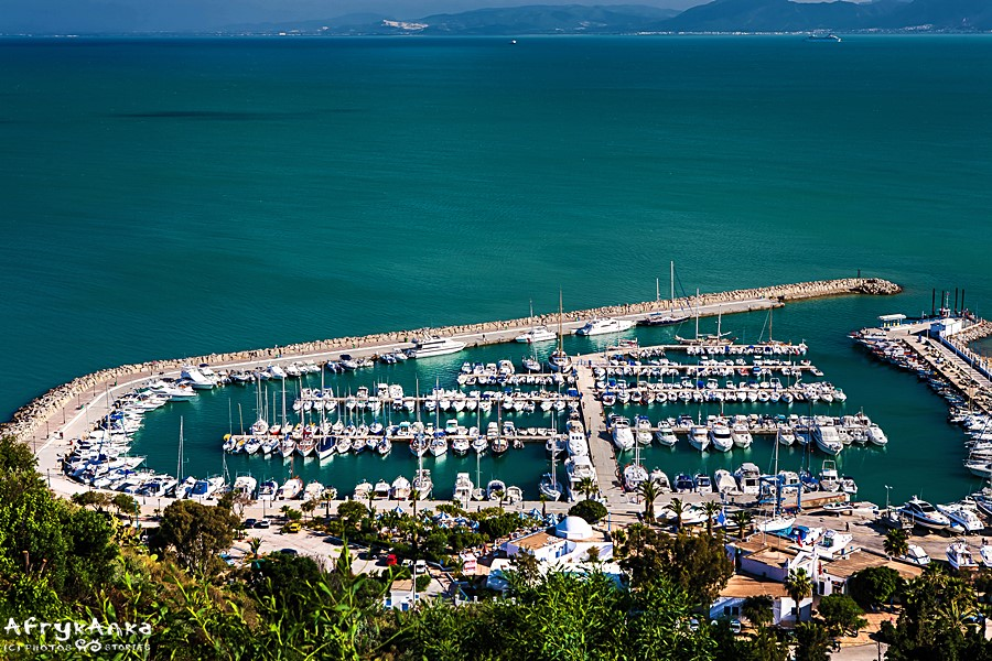Port w Sidi Bou Said.