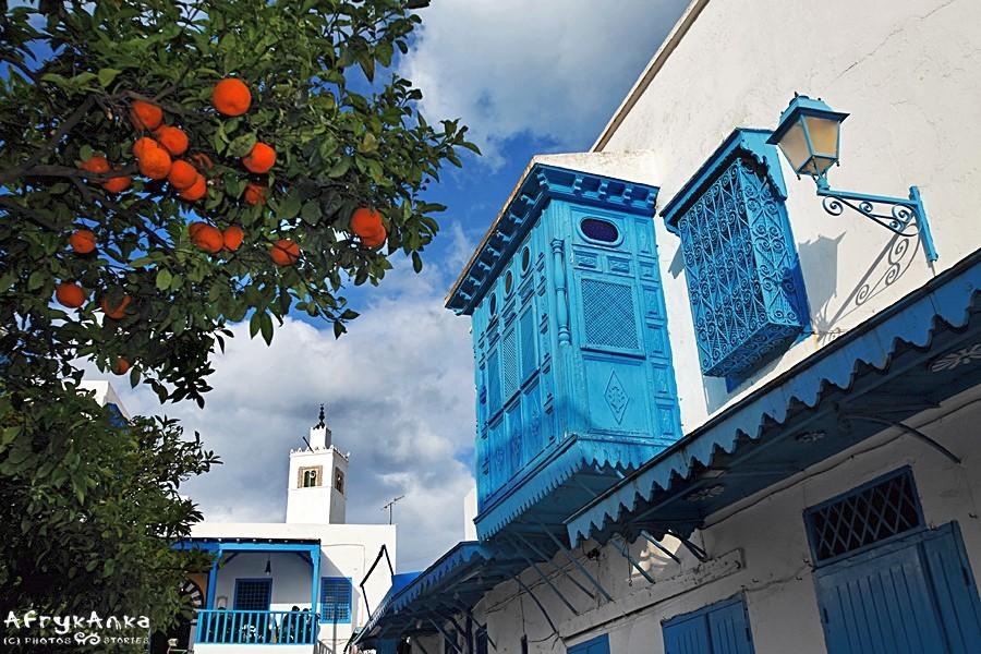 Pomarańcze rosną tu wprost na ulicy.