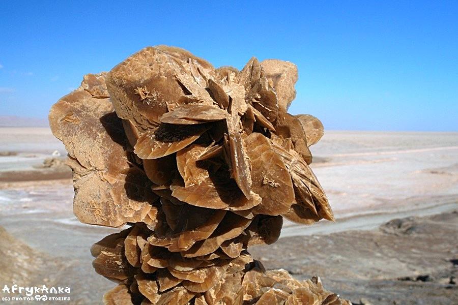 Tradycyjna róża pustyni.