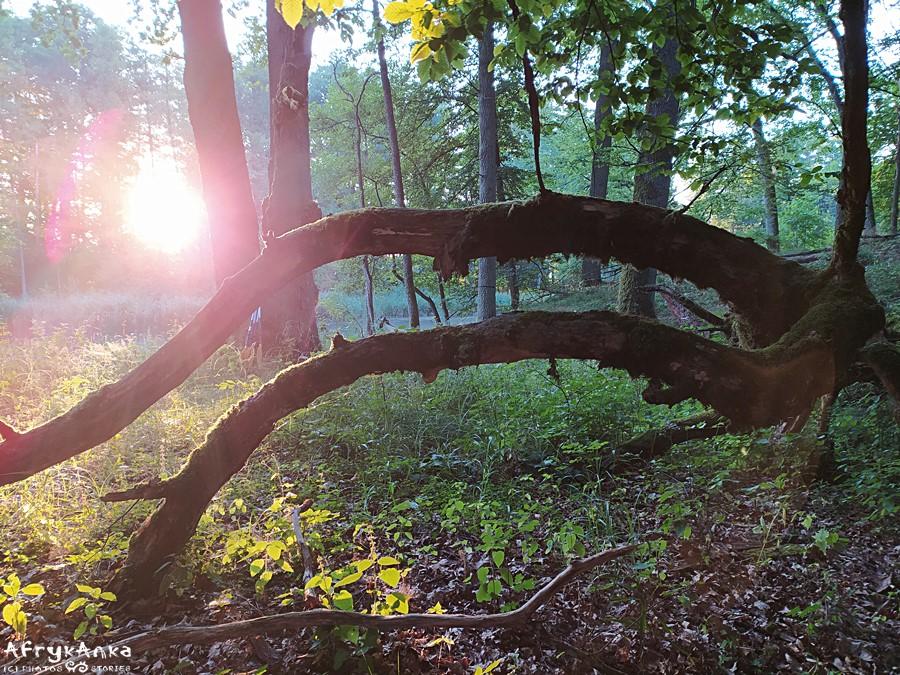 Wschód słońca nad Krutynią.