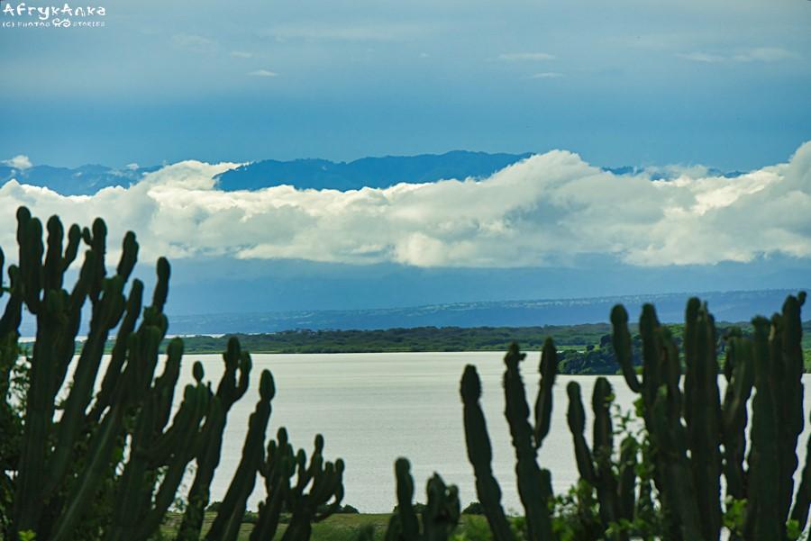 Kanał Kazinga - panorama okolicy.