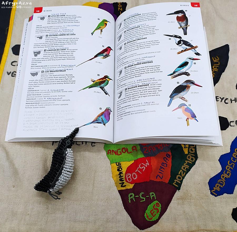 """""""Wildlife of Southern Africa"""" świetnie wprowadza w świat ptaków!"""