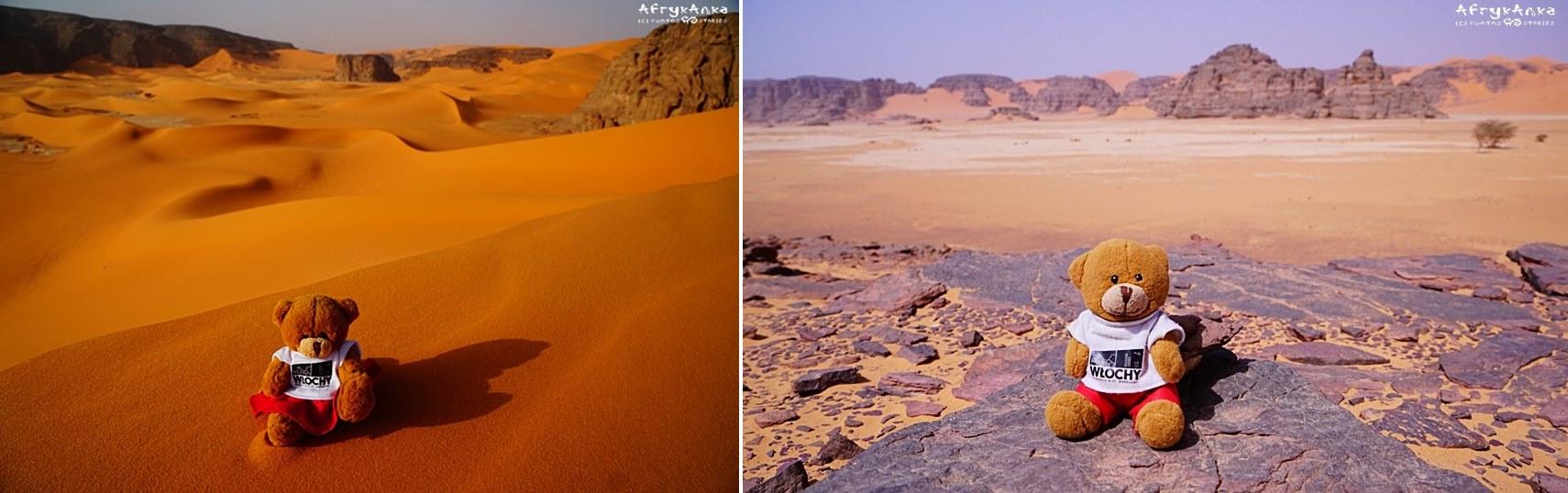 Różnorodne krajobrazy Sahary.