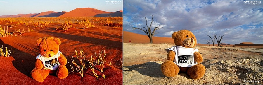Pustynia Namib i Dead Vlei.