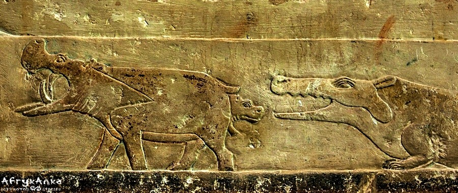 Scenka z grobowca w Sakkarze: narodziny młodego hipcia.