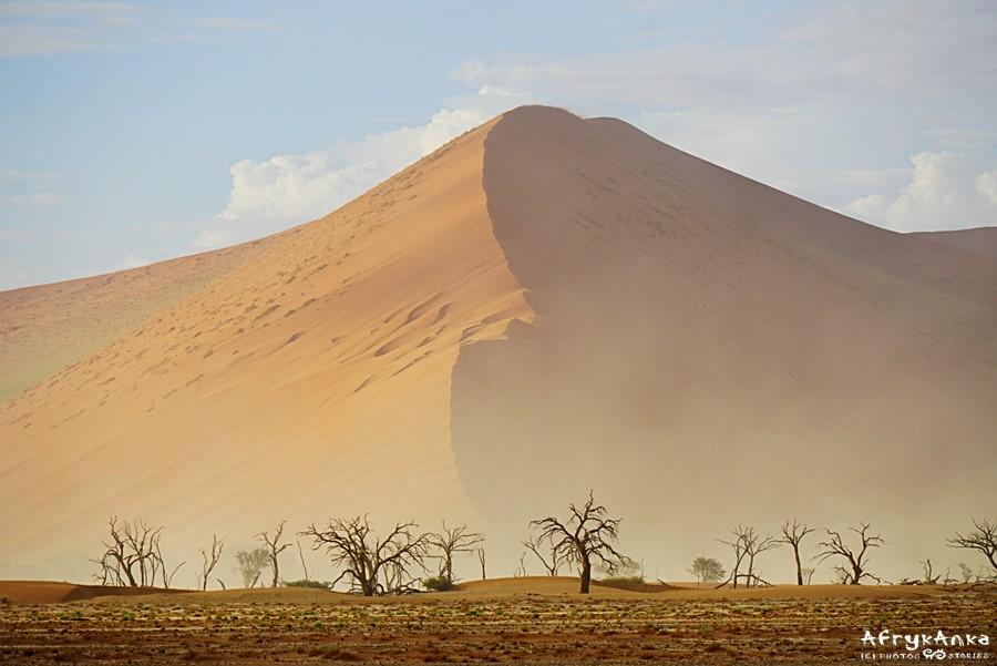 Martwa Rzeka u stóp wydm pustyni Namib.