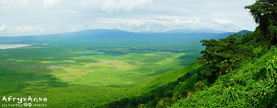 Wnętrze Ngorongoro z punktu widokowego.