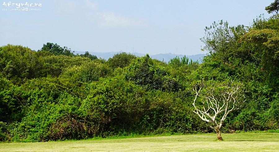 Wzgórza Ngong widziane z tarasu domu.