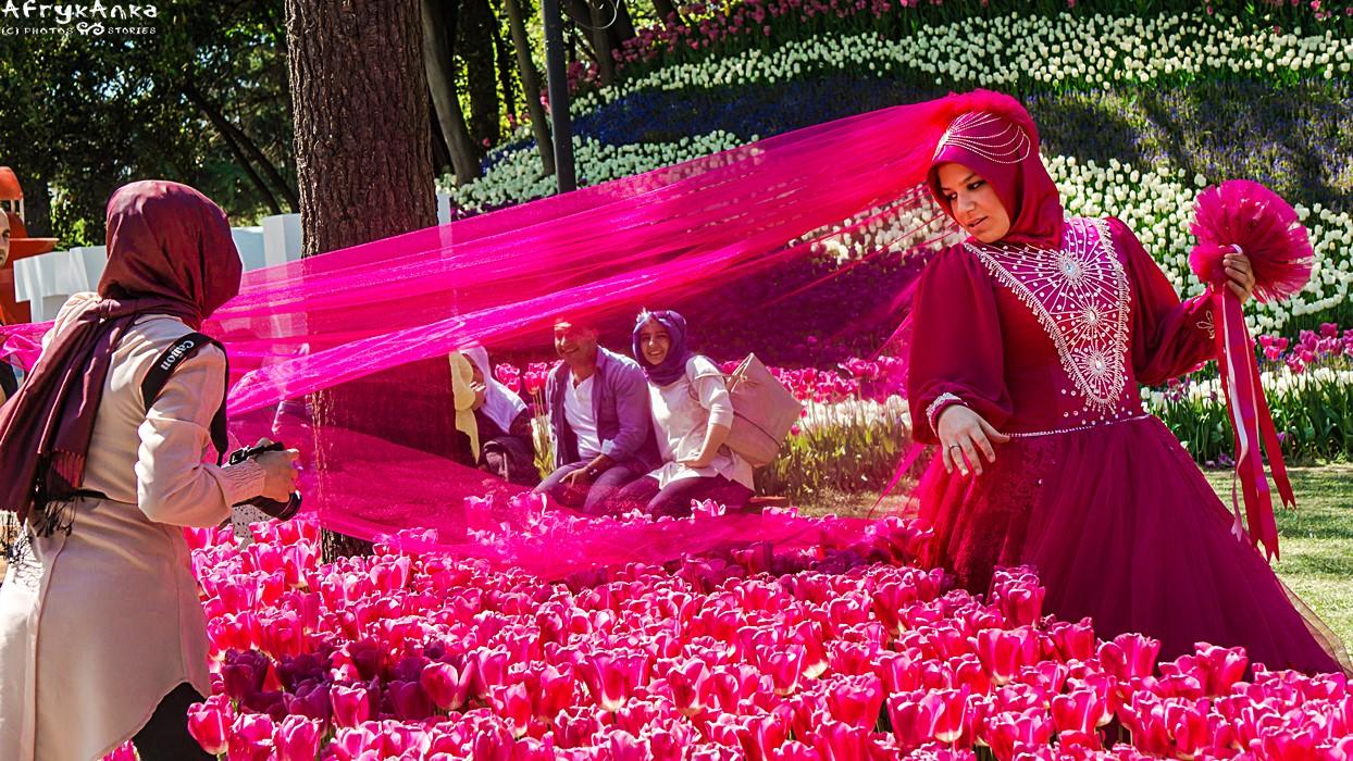 Park Emirgan w Istambule co roku rozkwita tulipanami i jest tłem ślubnych sesji.