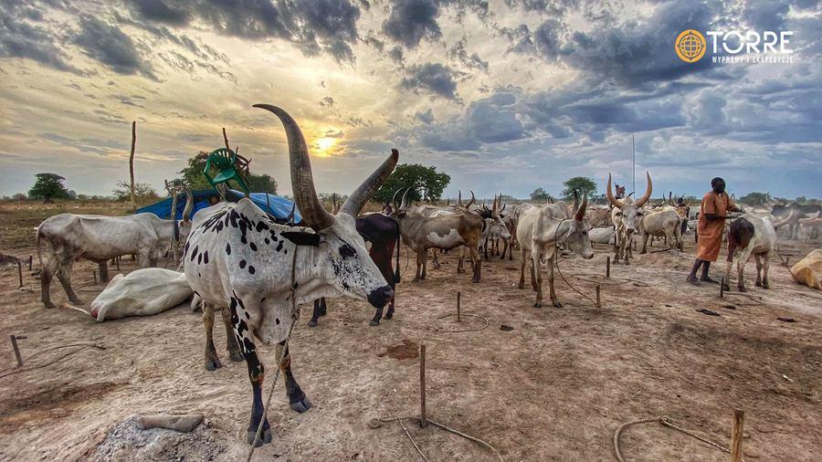 W Sudanie Południowym. Fot. Urszula Skorek