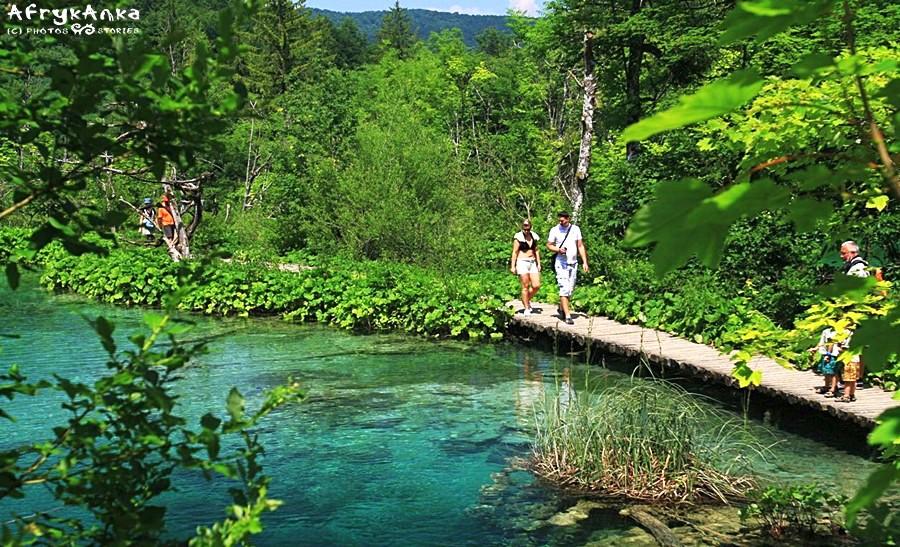 Między jeziorami spaceruje się po kładkach.