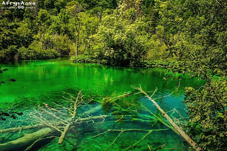 Te jeziora to prawdziwy cud natury!