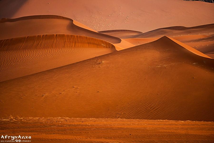 Jakie jeszcze skarby, kryją piaski Sahary?