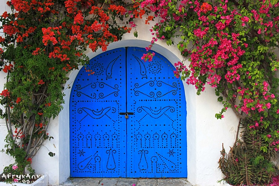 Bugenwilla wokół bramy w Tunezji.