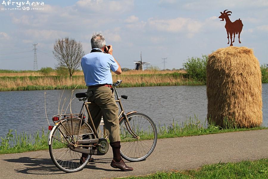 Rower jest idealny do pracy i na wycieczkę.