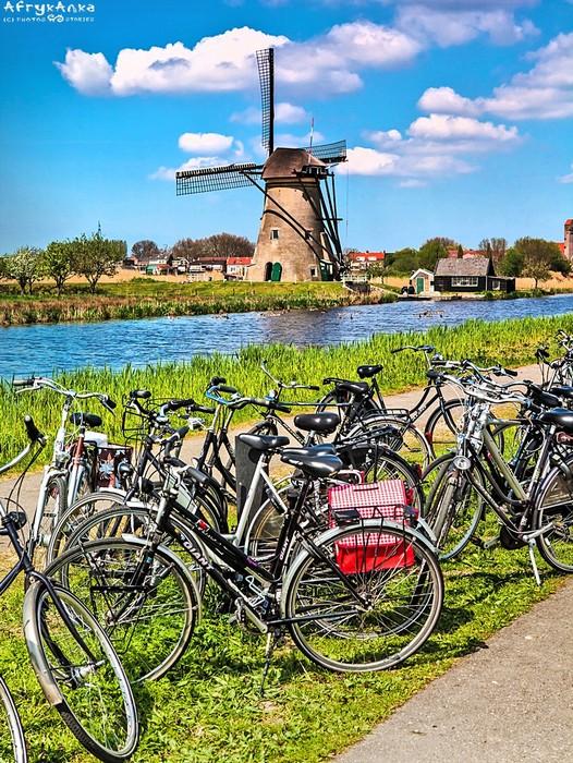 W kraju jest więcej rowerów niż aut!