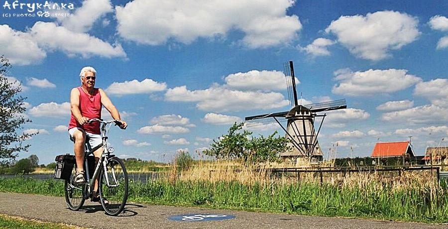 Rowery i wiatraki - to dziś wizytówka Holandii.