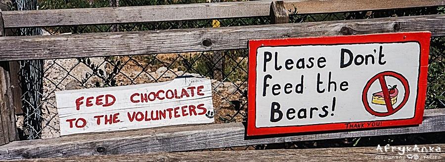 Nie karm niedźwiedzi - karm wolontariuszy :D