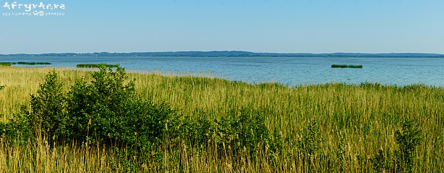 Panorama jeziora Gardno.
